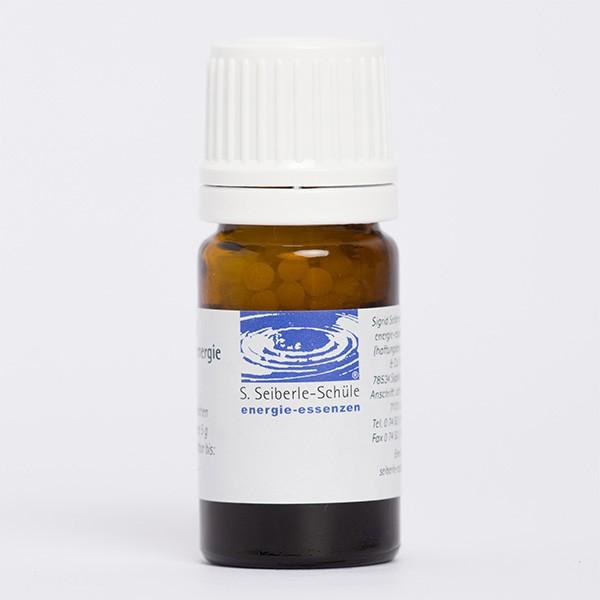Kortisol (energetisch)
